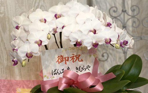 パン工房木村様よりの開店祝のお花